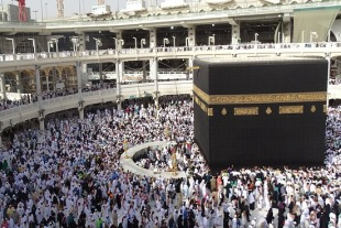 Saudi ministry takes measure to ensure Haj pilgrim welfare